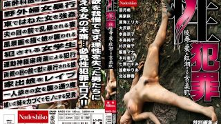 NASS-134 Intercourse Crimes. The Girl's Smooth Pores and skin Blushes As She Trembles In Disgrace